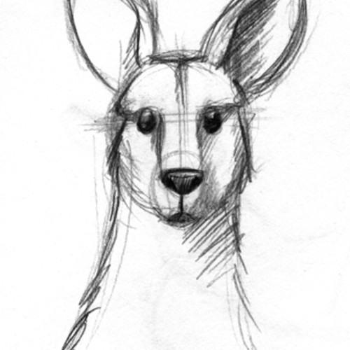 The Kangaroo Song (Updated)
