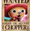 One Piece Soundtrack - Chopper's Theme