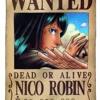 One Piece Soundtrack - Robin's Theme