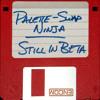 Palette-Swap Ninja - The Viva Pinata Song