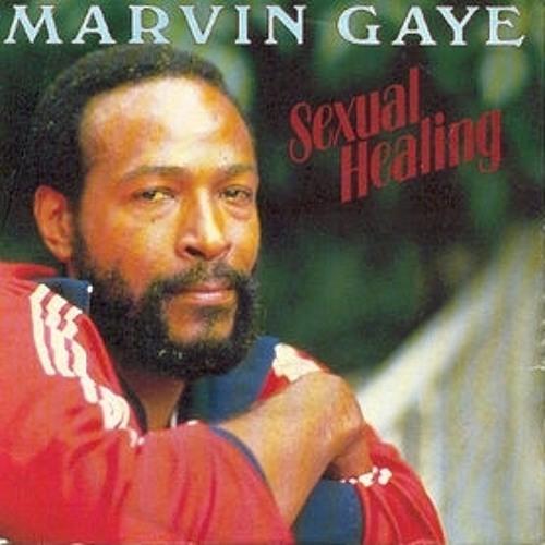 Marvin Gaye - Sexual Healing (DJ Price Caribbean Drumz Edit)