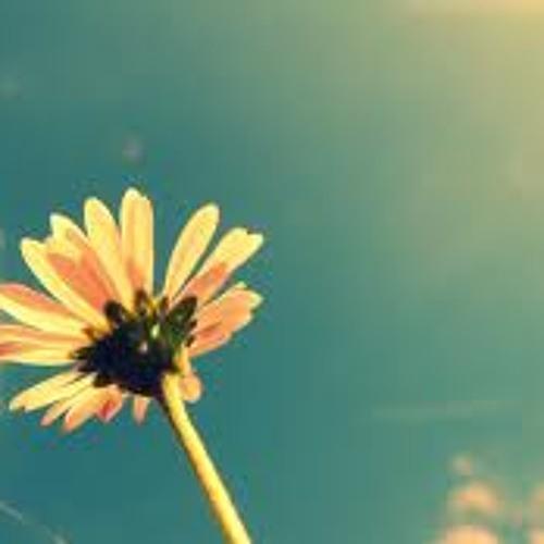 Moss - Summer Days