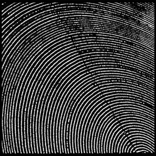 metasplice-A2-prismatic sway