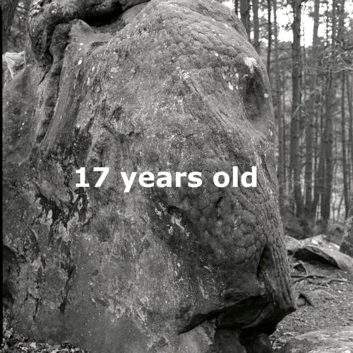 17 years old [album]