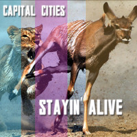 Bee Gees - Stayin' Alive (Capital Cities Cover)
