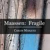 Dirk Maassen: Fragile