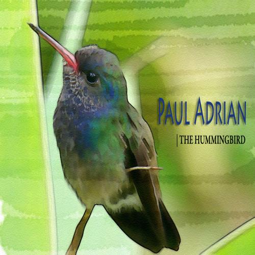 Paul Adrian - The Hummingbird