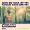 Beautiful Dreamer (Carolyn Malachi feat. Javier Starks) [Poetry Intro MTS Remix]