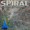 Spiral ~ Mr. Invisible, Lace, RoboKitty & Nix