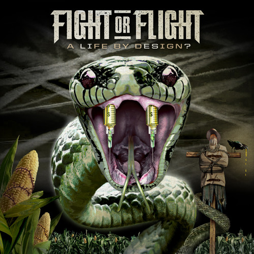 Fight or Flight - First of the Last