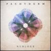 Pachyderm (Original Mix) [Free Download]