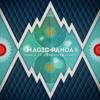 meow198 Magic Panda - Temple of a thousand lights LP