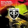 Stereo Wildlife feat. Kid Alaska - Throwing Stones (Eshericks Remix)