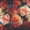 Rudimental feat. Emeli Sandé - Free (Kasiorama Remix).mp3
