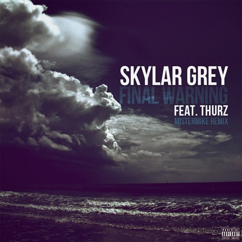 "Skylar Grey ""Final Warning"" MisterMike Remix featuring THURZ"