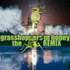 Grasshoppers in Honey (Rusty Matyas / Imaginary Cities remix)