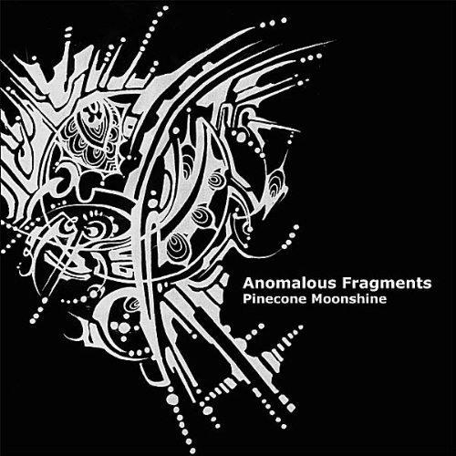 Reorient - Indidjinous (PINECONE MOONSHINE 2011)