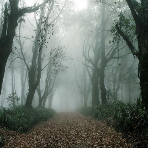 Ludovico Einaudi - Two Trees (HQ Cover)