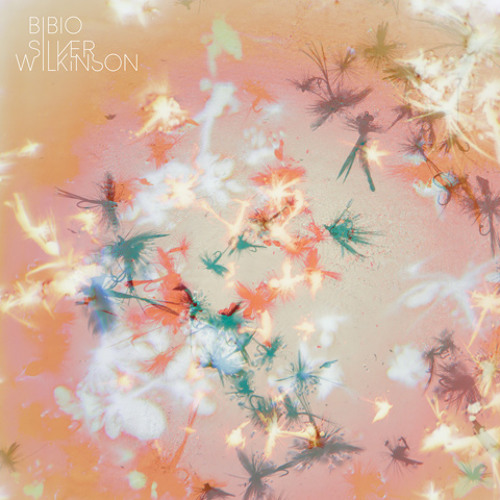Bibio - You Won't Remember...
