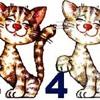 44 Gatti