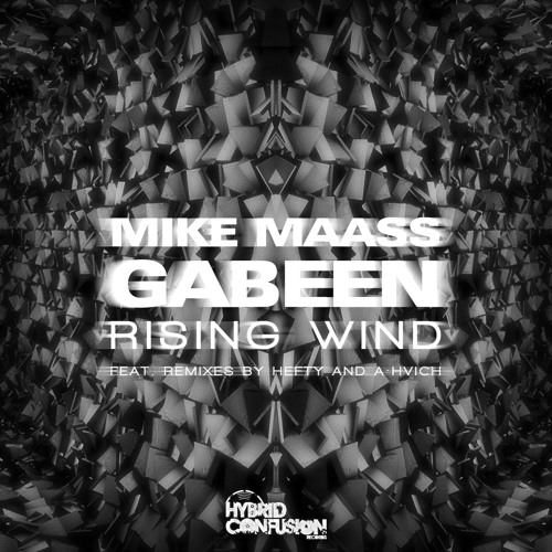 GabeeN & Mike Maass - Rising Wind [Hybrid Confusion]