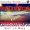 Polymniatonez - Magnetic fields( Original Mix)