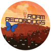 Codebase - Falling Bricks (Roam Recordings)