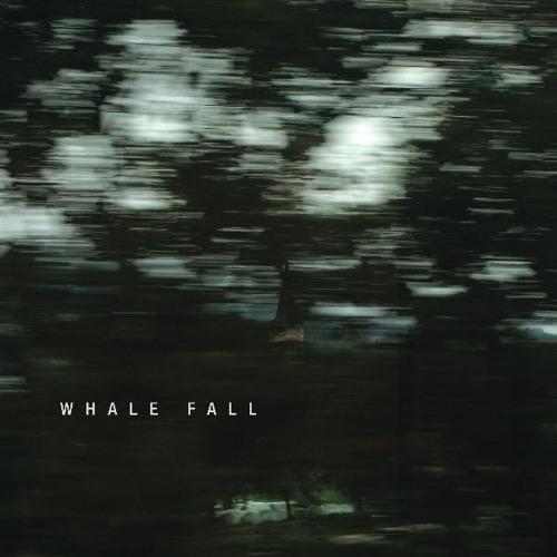 Whale Fall - Kodiak