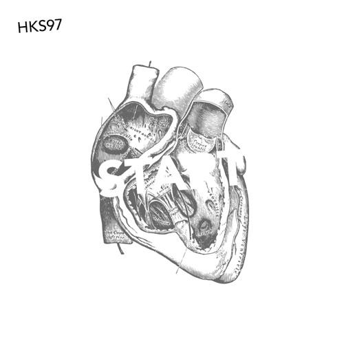HKS97 — Start