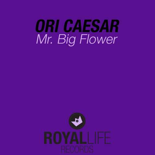 Ori Caesar - Mr. Big Flower (Pure 12'' Original)