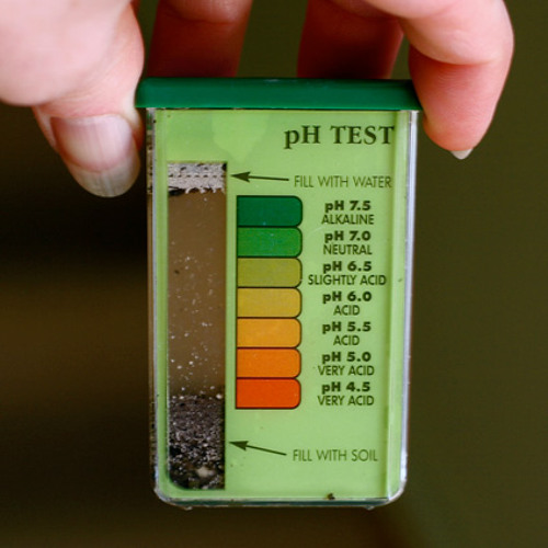What's the pH of your garden plot?