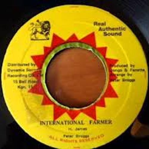 International farmer (bungalo dub mix)