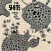 The Shins - A Comet Appears (live)