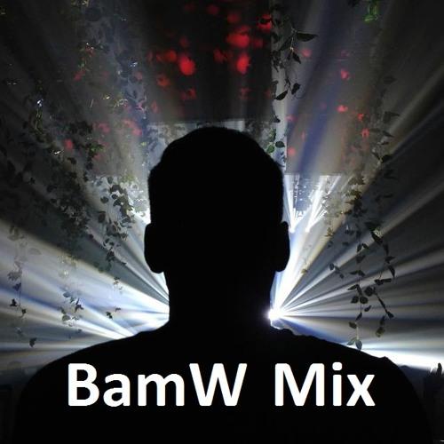 BamW - Dance electro house mix 2013