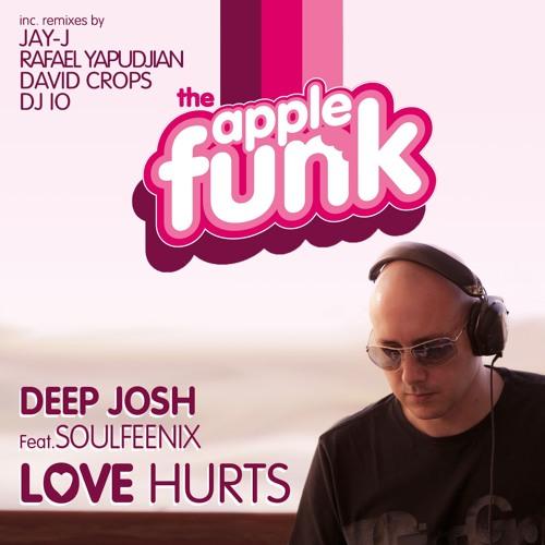 Deep Josh Feat Soulfeenix -  Love Hurts (Vocal mix) SNIPPET