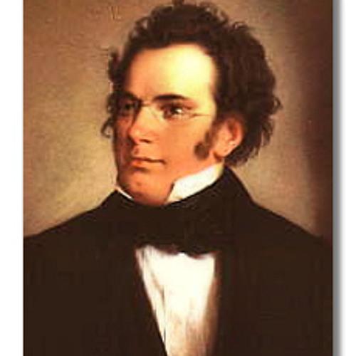 Corey McKern singing 'An die musik' by Franz Schubert