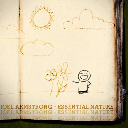Joel Armstrong - This Wonderful Mess (Original Mix)