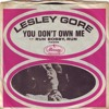Lesley Gore - You Don't Own Me W.I.P ( Art Dubstep Mix )