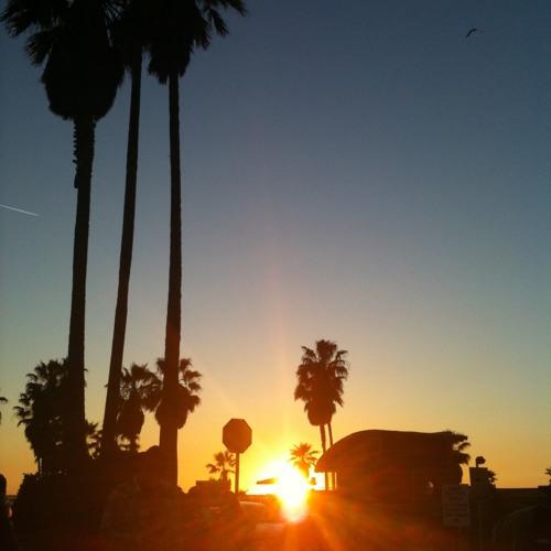 Sunset palm tree (2006)