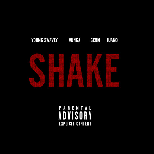 Young Swavey - Shake [Prod. Baauer] {NEW 2013} (Party Edit)