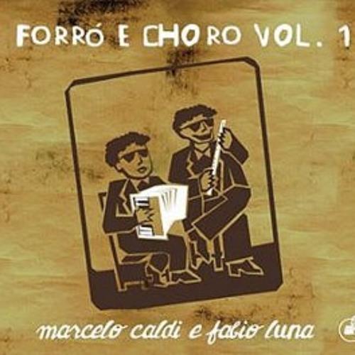 Forró e Choro vol. 1 - Marcelo Caldi e Fábio Luna