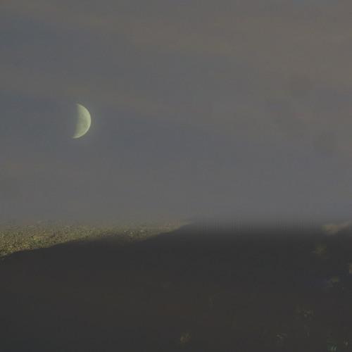 Moon & dirt