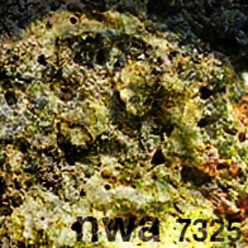 NWA 7325
