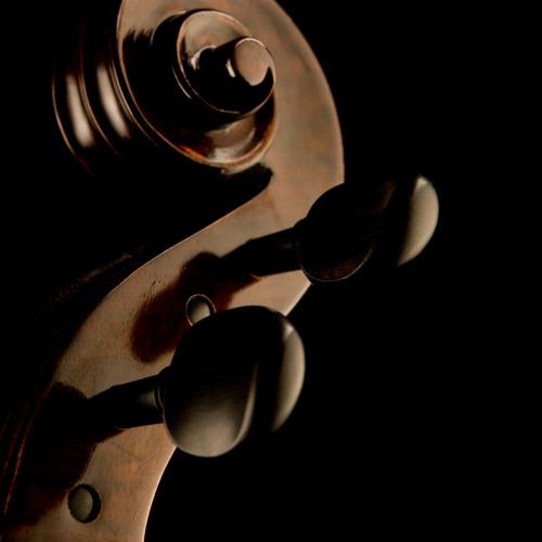 The Cello's Dance - Andrés Triana