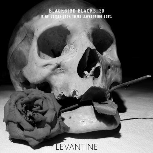 Blackbird Blackbird - It All Comes Back to Us (Levantine Edit)