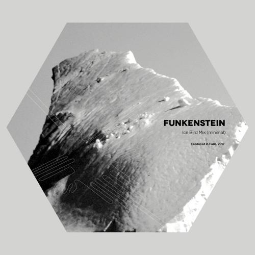 Funkenstein - Ice Bird Mix (Minimal Techno)
