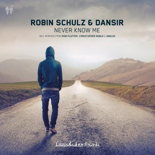 Robin Schulz&Dansir - Never Know Me (Ron Flatter Remix Remix)