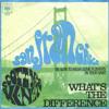 Scott McKenzie - San Francisco (Cover)