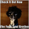 FatBoy Slim - Funk Soul Brother ( Romina Green Rmx ) ( FREE DOWNLOAD )