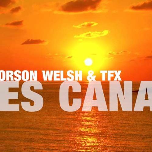 T.B.A. Orson Welsh & TFX - Es Cana (Original Mix)
